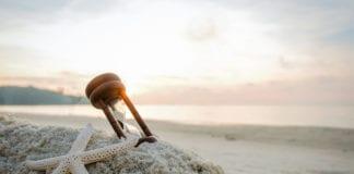 ALIMENTAZIONE: benessere e longevità grazie alle sirtuine.