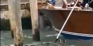 VENEZIA: spavento davanti alla stazione, uomo recuperato in laguna.